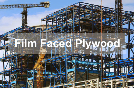 Marine Plywood / Film Faced Plywood Factory
