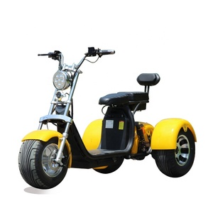 TRUMKI motorcycle electric scooter 3 wheels with 2 battery