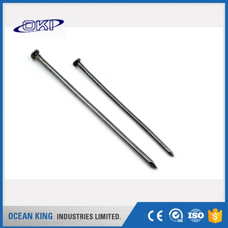 Quality promotional ring shank flat head Roofing galvanized best common wire iron <strong>nails</strong>