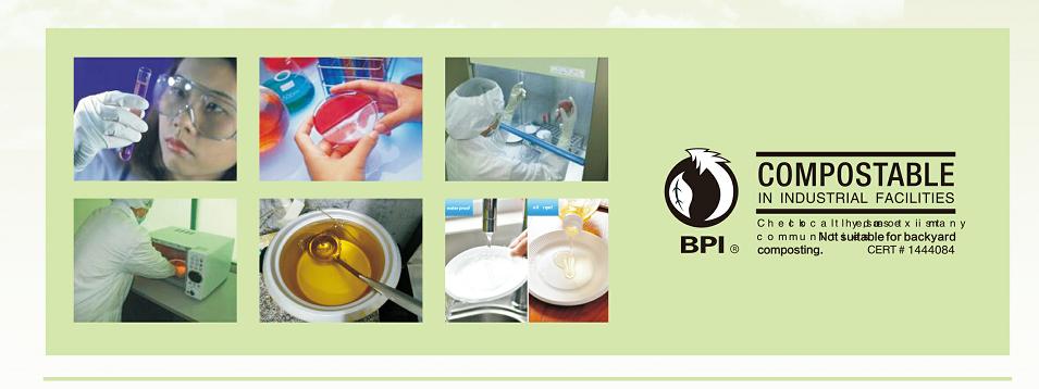 Fast-Food-Tablett Biologisch abbaubarer Lebensmittelbehälter Einwegbagasse mit 5 Fächern