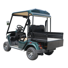 Single Seat classic electric golf buggy carts