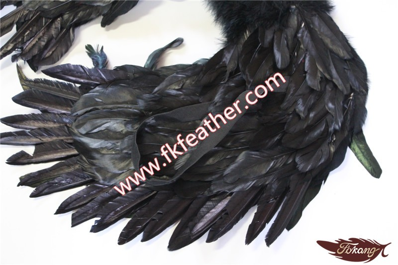 immagini di grande gallo nero