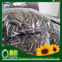 High Quality Raw Material Sunflower Seed/high oil content sunflower