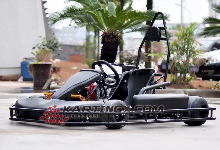 China Cheap Sports Two Seat Racing Go Karts For Sale