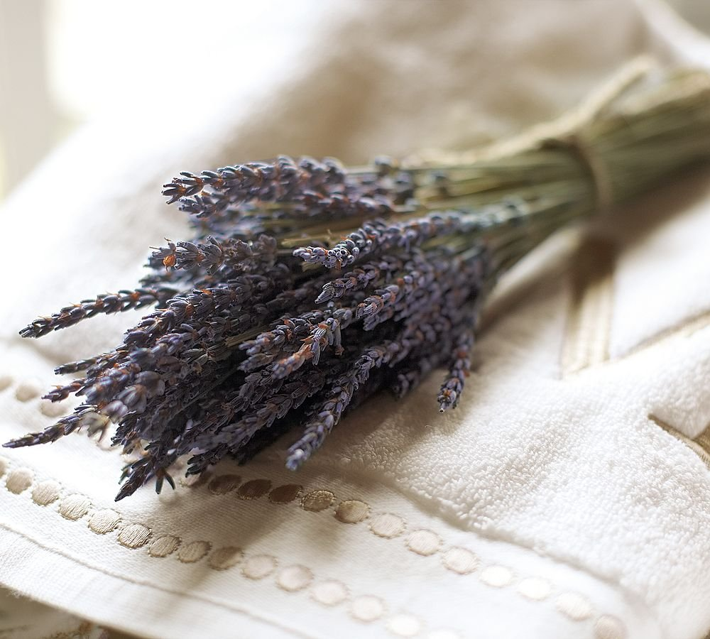 French Dried Lavender Flowers Bunch, Fragrant 100gr