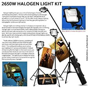 Britek#FK2650 Professional Photography 2650W Halogen light kit with 3 Halogen Light+2 Compact Light Stand+1 Studio Boom stand+2 Carrying Bag