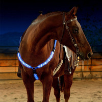 NYLON Horse Equipment/High Quality Horse Halter/Horse Products