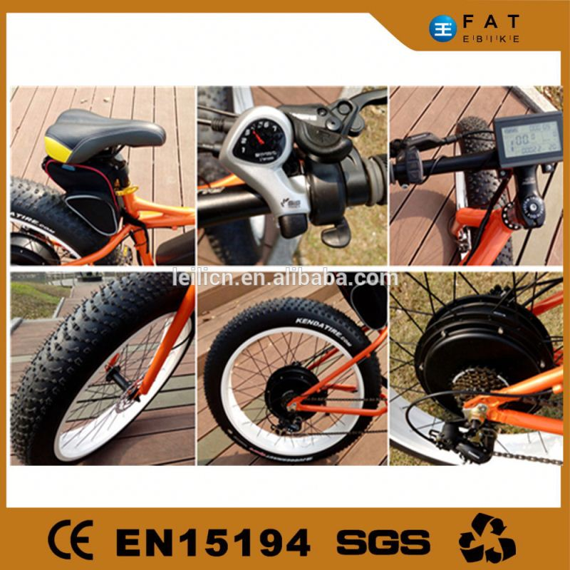 BLDC rear motor electric fat bike 1000w chinese with 48v 20ah lithium battery
