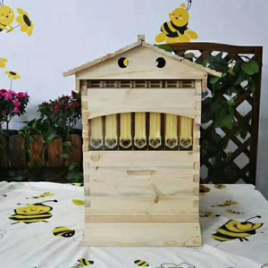 Wooden bee hive honey flow hive plastic bee hives for bees wholesale factory price