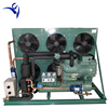 /product-detail/30hp-bitzer-semi-hermetic-two-stage-compressor-cold-room-condensing-unit-60572692604.html