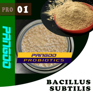 PRO-01 poultry feed raw materials 10~100 billion CFU/g bacillus subtilis
