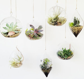 New Arrived Product Glass Terrarium Bowl Cheap Glass Bowls Clear