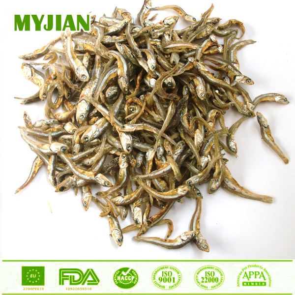 Dried Fish Bulk Wholesale Dry Pet and Cat Food Cat Treats Cat Snacks with all Natural Ingredients OEM and Private Label