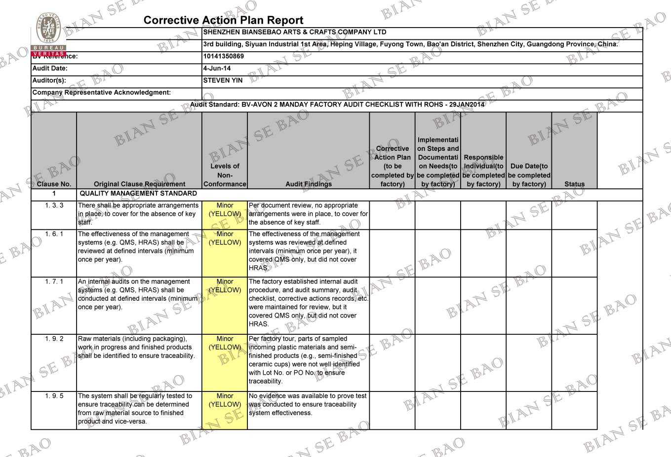 Corrective Action Plan Report