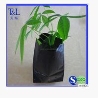 Hig quality plastic seedlings vegetable/plants grow holes bag