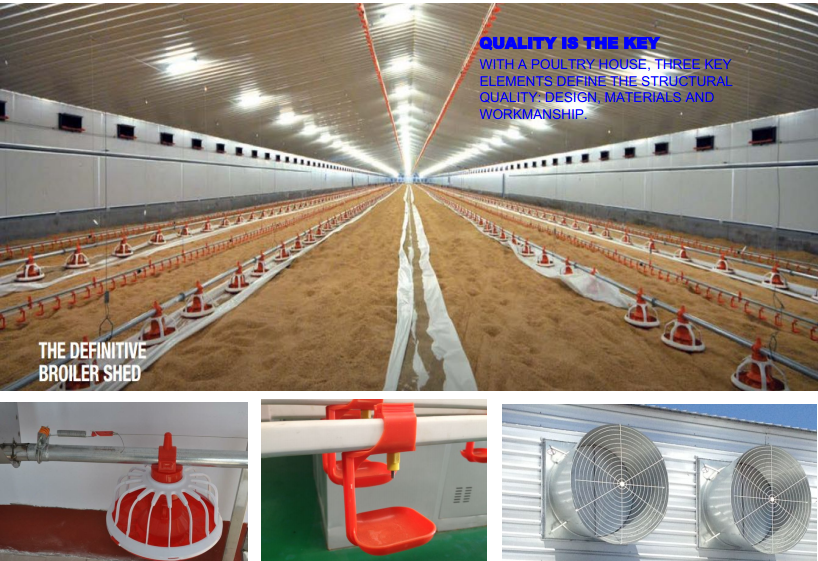 Prefab Steel Structure Poultry House Chicken Farm Equipment Kit