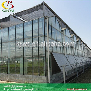 Venlo roof Glass greenhouse mini glass greenhouse garden green houses