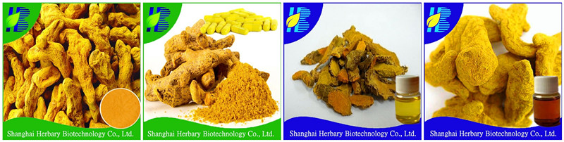 2021 Latest Turmeric Extract Curcumin 95%