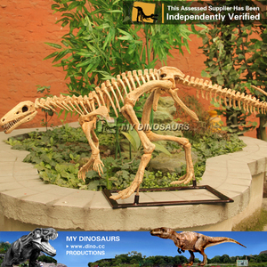 MY Dino-Home decoration artificial dinosaur skeleton toy