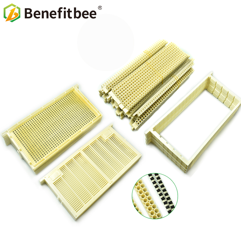 1 Pcs Nicot Bee Rearing System For Beekeeping Plastic Nicot Cage Too.pro