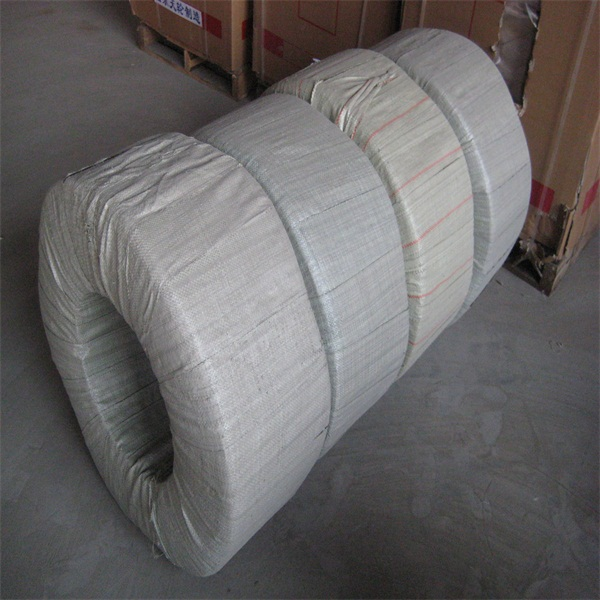 Plastic low price hot dipped galvanized iron wire with high quality