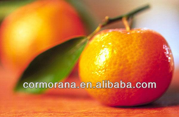 100% natural Citrus Aurantium Extract Hesperidin Powder 90%-98%