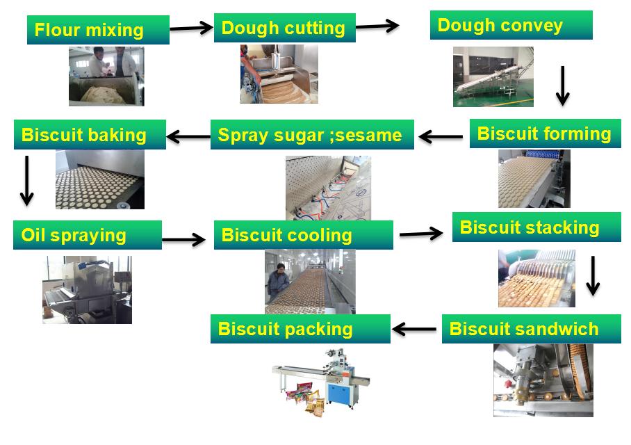 800kg par poste ligne de production de biscuits