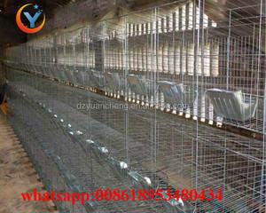 Large Scale cheap easy clean Farming Rabbit Breeding Metal Battery Cages