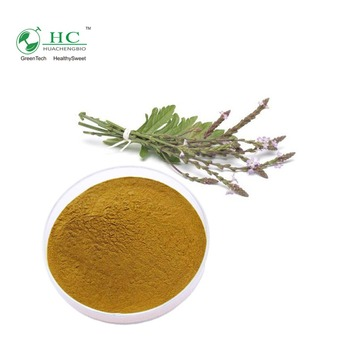 High Quality Product European Verbena Extract