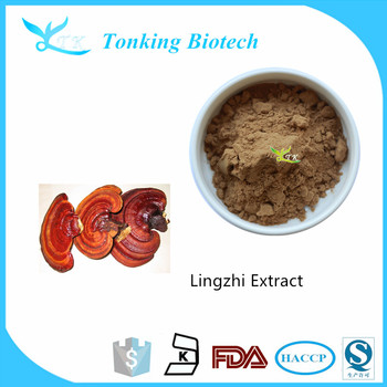 Manufacturer ganoderma mycelium/reishi mushroom extract powder