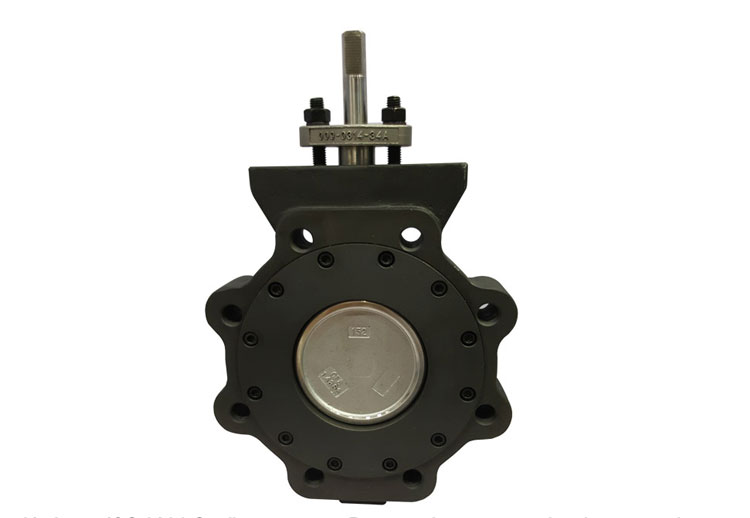 Carbon Steel Lever Handle, Worm Gear Operator Wafer Lugged  Double Flanged Flange Butterfly Valve