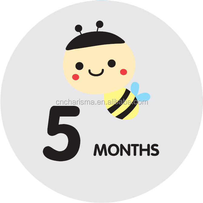 "24 Pack of 4"" Premium Baby Monthly Stickers clothing decal pvc/vinyl vinly sticker"