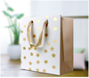 /product-detail/wholesales-luxury-paper-gold-foil-stamping-wedding-candy-gift-bags-with-handles-60526776742.html