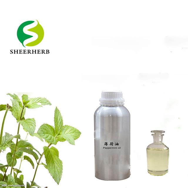 Sheerherb אספקת בתפזורת 100% טהור טבע מנטה תמצית מנטה חיוני שמן