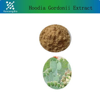 High Quality Natural Hoodia Gordonii Extract With Fast Deliver For