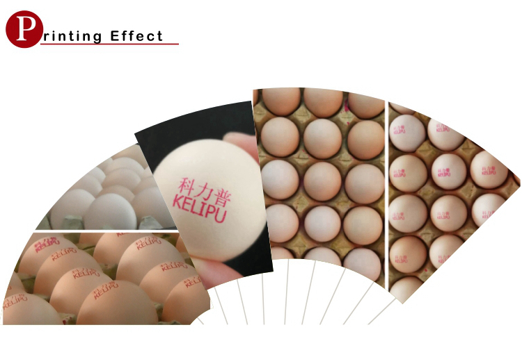 High Resolution Inkjet Printer and Batch Expire Date Code Printing Machine on Egg Products