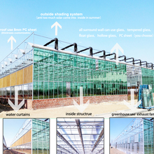 venlo glass greenhouse commercial large glass greenhouse agricultural