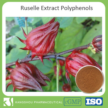 High quality 10% Polyphenols Ruselle extract rose eggplant extract