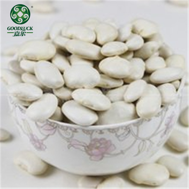 Different Types Dried Large White Kidney Beans Price in India
