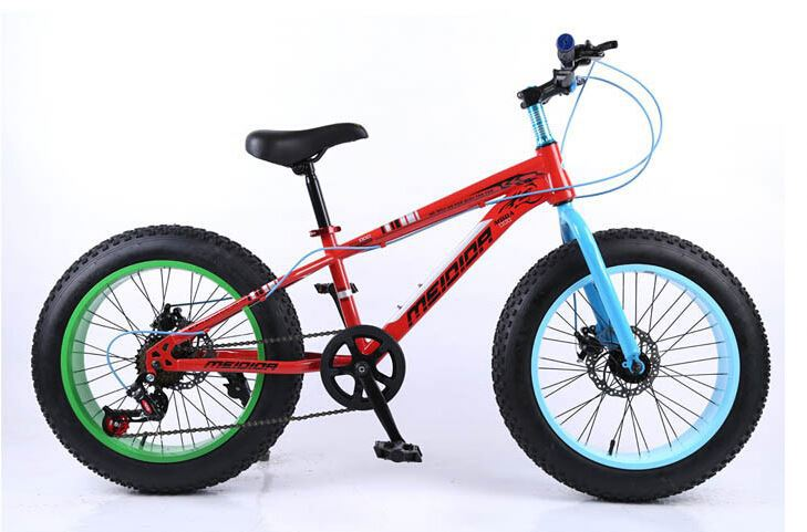 Dependable Performance 29 26 Inch Fat Bike/Snow Mountain Bike