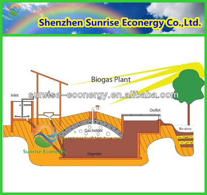 medium size 100m3 alternative energy biogas digester