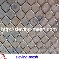 Ss Architectural Wire Mesh,Metal External Wall Cladding Mesh