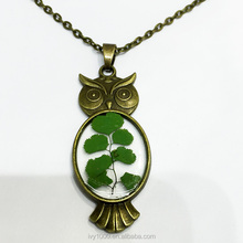 Fashion Women's Necklace Dry Flower Jewelry Trendy Charms Crystal Resin Owl Necklace Vintage Long Chain