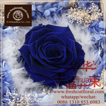 Wheat Preserved Wholesale Rose Flower Gift From Sunshine Yunnan