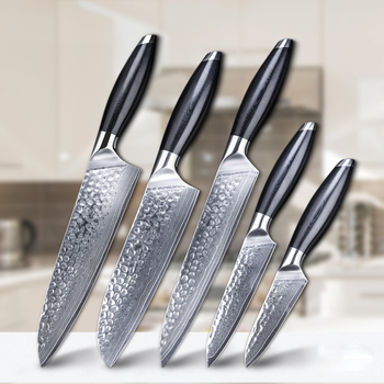 Di alta Qualità 5pcs Coltelli Chef Giapponese Damasco Coltello Da Cucina Set