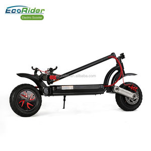 EcoRider E4-9 Two Wheel 48V 10inch Dual Motor Folded Electric Scooter