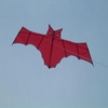 hot sale high quality customized kite surfing kites