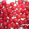 top quality Canned red cherry with best price