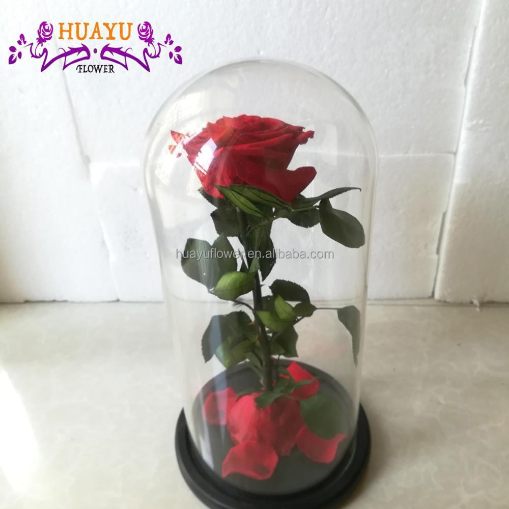 Rose flower in glass dome rose flower in glass dome suppliers and rose flower in glass dome rose flower in glass dome suppliers and manufacturers at alibaba izmirmasajfo Choice Image