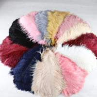 Dyed Color Wedding Ostrich Feather
